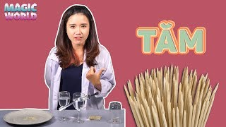 4 SIMPLE SCIENCE EXPERIMENTS WITH TOOTHPICKS | MAGIC WORLD
