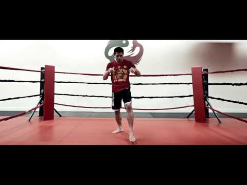 Mixed Martial Arts Moves Part 1 - The Thai Boxing Knee
