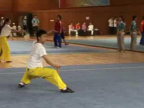 Torneo de Wushu de Pekín 2008
