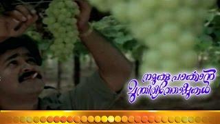 Namukku Parkkan - Malayalam Full Movie - Namukku Parkkan Munthiri Thoppukal  - Part 15 Out Of 24 [HD]