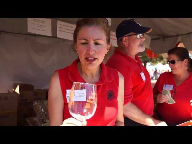 2011 Almaden Valley Art & Wine Festival: Interview with Volunteer Edesa Bithadal