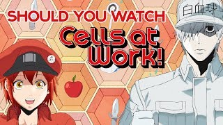 Should You Watch Cells at Work?