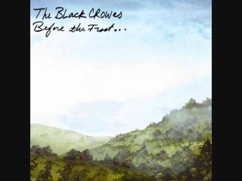 Black Crowes - Houston Dont Dream About Me