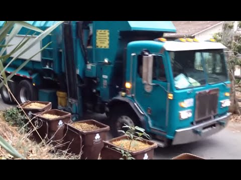 L.A.'s Giant Horse Manure Collections!! *MUST WATCH*