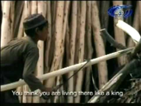 Shinware Lawangeena By Zarsanga   Dauf Hanif video