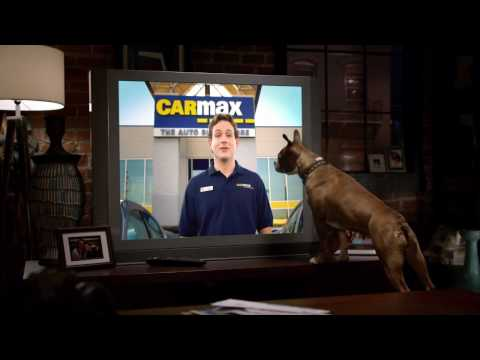 CARMAX - DOG - SUPERBOWL