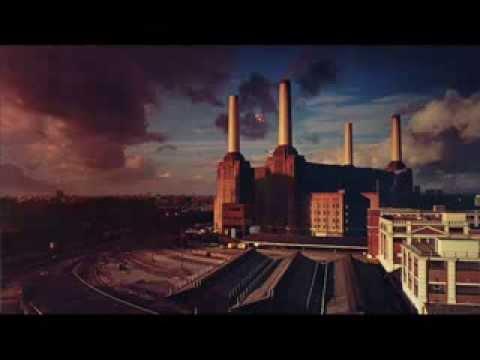Dogs - Pink Floyd (Subtitulada Español)