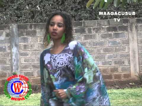 Hees Looli New version Sagal Artis Waagacusub Tv