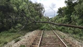 Así quedó Lakeland tras el paso de Irma/ Lakeland