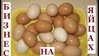 КАК и ГДЕ ПРОДАТЬ ЯЙЦА.Реализация яиц.Мой опыт