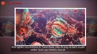 Nóng  Phát hiện kháng thể vô hiệu hóa được 98% các chủng virus HIV