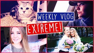 6 STÄDTE IN 6 TAGEN - Weekly Vlog EXTREME! 🤓