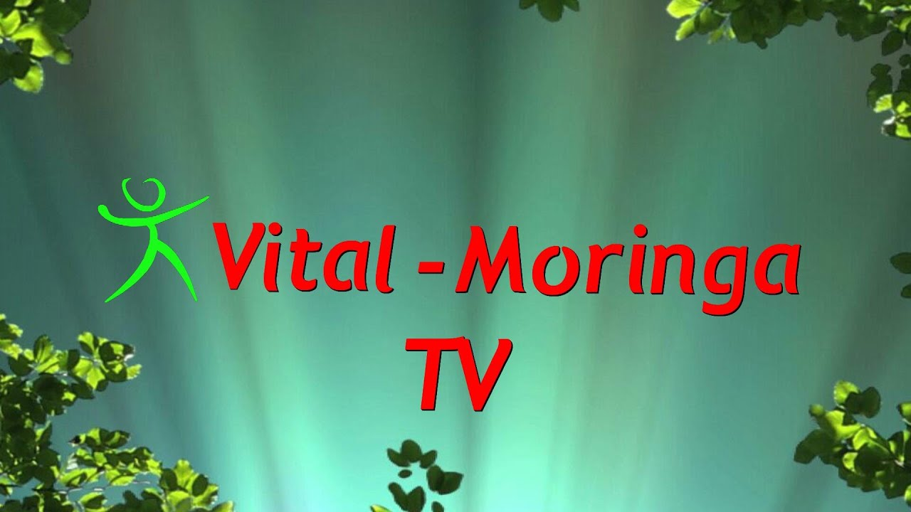 Vital Moringa TV Teil 2 - Vital-Moringa 2015-04-29 15:56