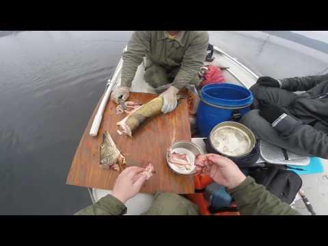 рыбалка в байките