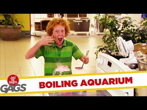 Fish Boiling In Aquarium Prank
