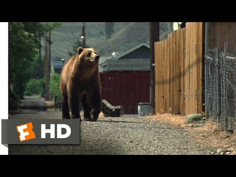 An Unfinished Life (1/12) Movie CLIP - The Bear's Back (2005) HD