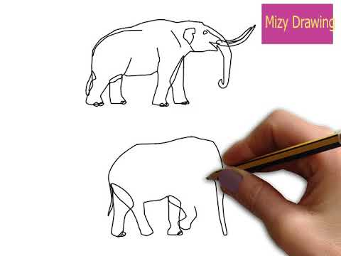 How To Draw Animals  Step by Step Books