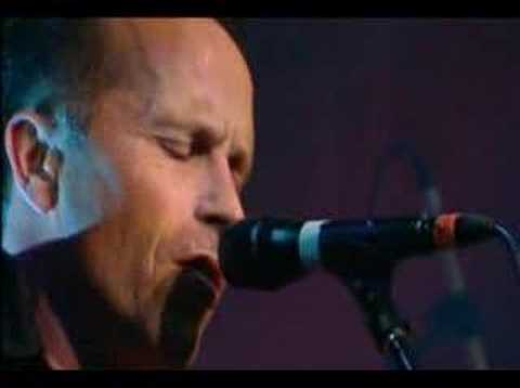 Mark Seymour - Throw Your Arms Around Me