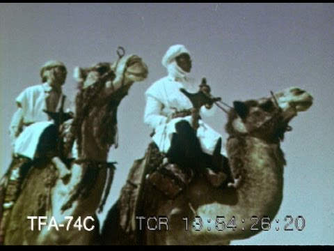Life In The Sahara, 1953