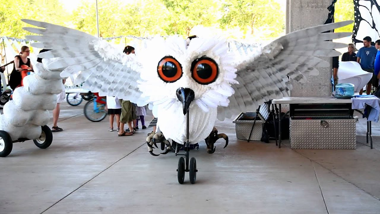 Bikezoo.com Austin Bike Zoo Owl