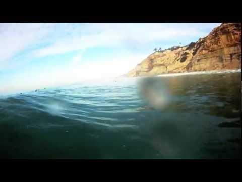 show user reviews black beach diego california