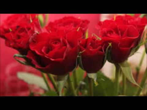 Ana mali fihash-Abdullah Mahdawi- عبدالله المهداوي -انا مالي ش فيها