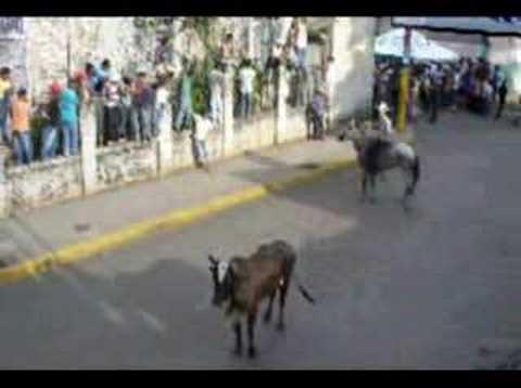 TOPE DE TOROS EN MASAYA NICARAGUA