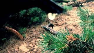 Watch Eels Love Of The Loveless video