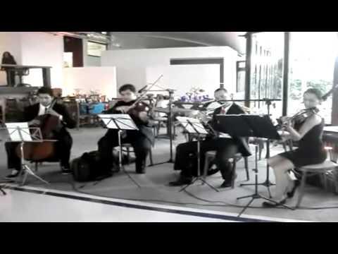 Stand by Me Beatles - Violino - Música para Entrada dos Padrinhos...