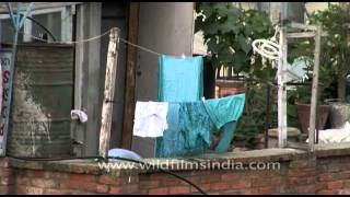 Nepali woman dries clothes on her roof in Kathmandu