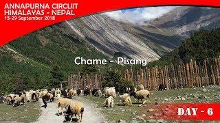 Annapurna Circuit  2018 - Day #6 ( Chame - Pisang )