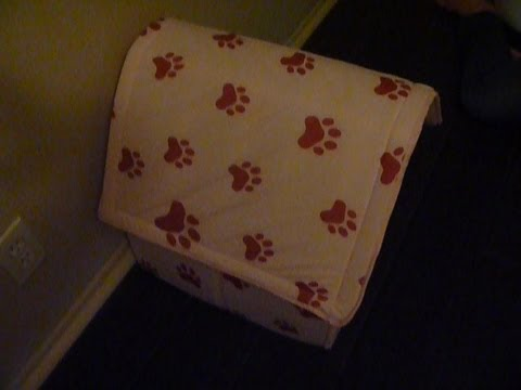 Testing my Pet's Pad 'Fold & Go' Portable Pet House I bought from CVS for $12.99. Polyester and Foam