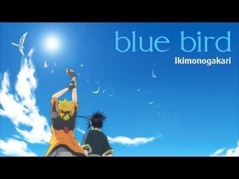 (Vietsub - Romaji - Kanji) Bluebird (ブルーバード) - Ikimono Gakari