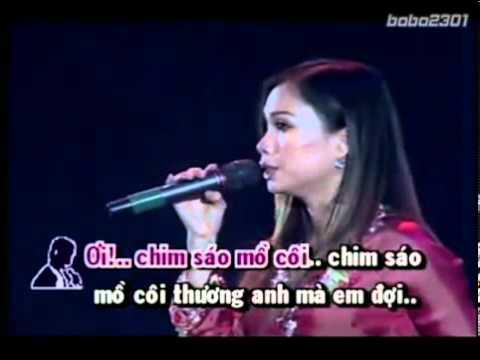 Chim Trắng Mồ Côi - Karaoke feat Cẩm Ly