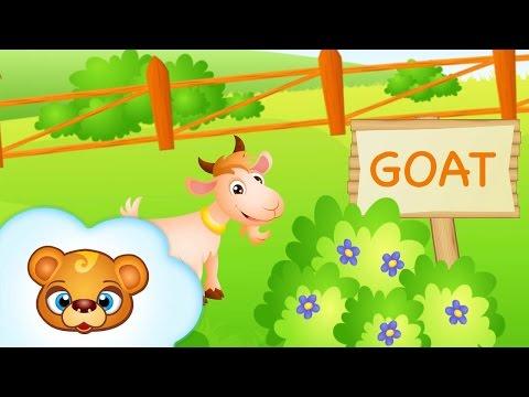 Farm - Nauka Języka Angielskiego Dla Dzieci