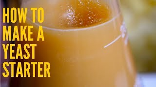 How To Make a Yeast Starter for Beer