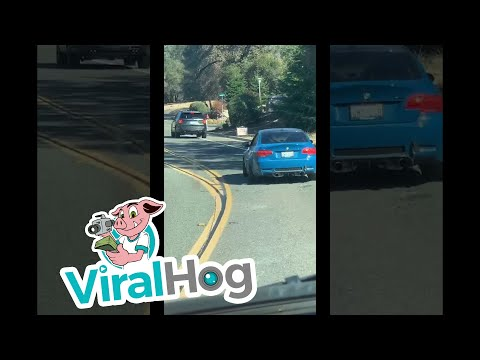 Sports Car Drifts Right Off the Road || ViralHog