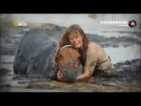 Смелая девушка пытается спасти свою лошадь - NAT GEO WILD HD