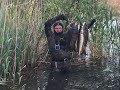 Нижняя Волга подводная охота 18-21.05.2017 часть 2 сазан щука лещ сом
