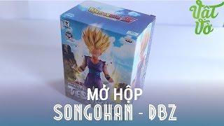 Vật Vờ - Mở hộp Songohan :))