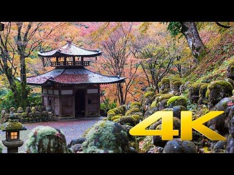 Otagi Nenbutsu-ji - Kyoto - 愛宕念仏寺 - 4K Ultra HD