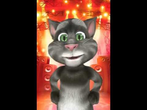 Il Gatto Tom E Le Sue Battute
