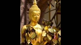 Diễn đọc: Phật Thuyết Kinh Tạc Hình Tượng Phật