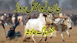 Dangerous Bull race accident in Pakistan Punjab   Bail race video 2017