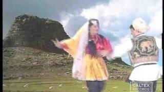 Shahnaz Tehrani & Hojati - Gholi (Azari Music & Dance) | حجتی و شهناز تهرانی