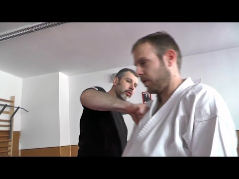 Systema training for Aikido practitioners - Episode 3 (with English subtitles) Image 1