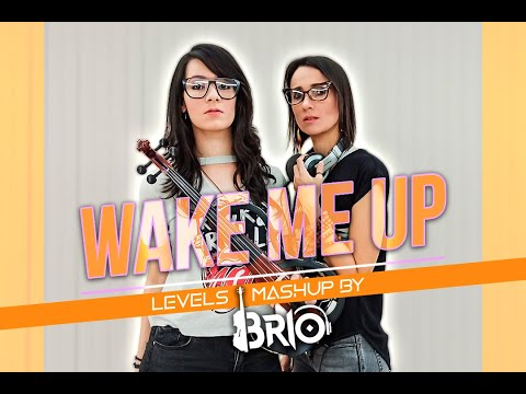 Avicii Wake Me Up/Levels Mashup by BRIO
