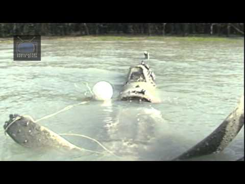 Spitfire at Crocodile Creek   Storyteller Media