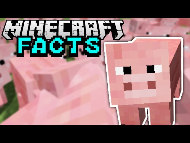 ALTES SCHWEIN DESIGN | Minecraft Facts #74 | ConCrafter