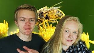 Pollenallergi irriterer med min søster!